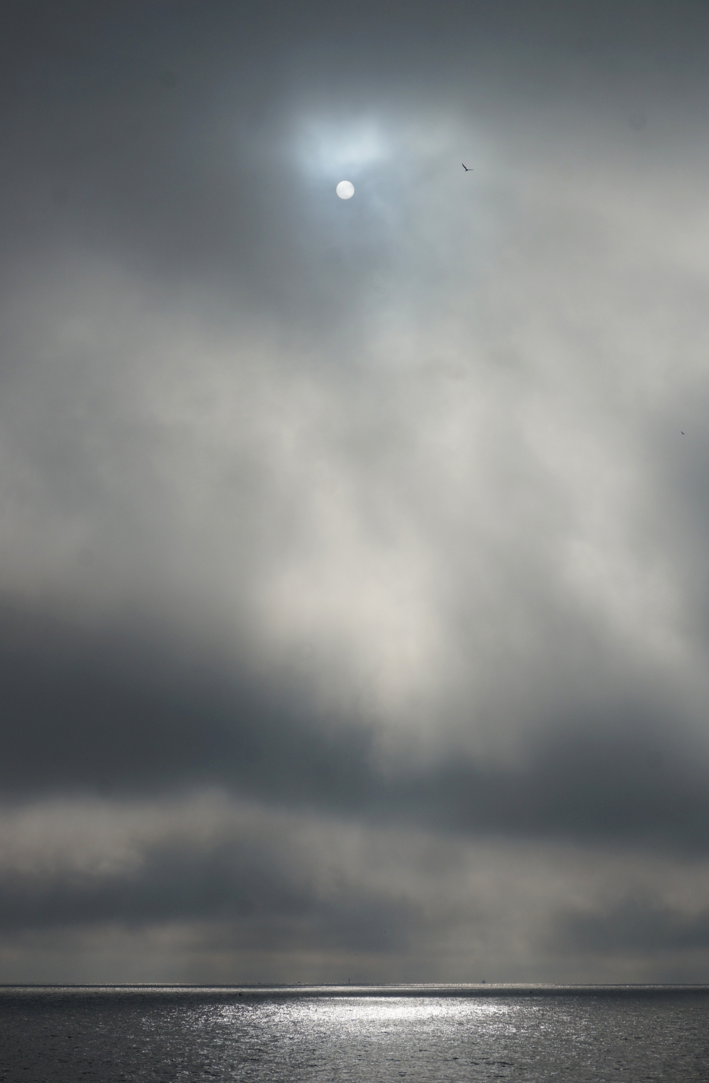 soleil-gris