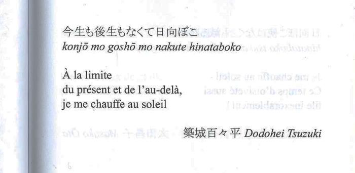 haikuSoleil1