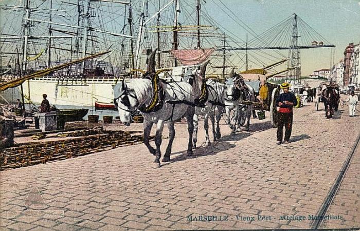 vieux port 1900.jpg